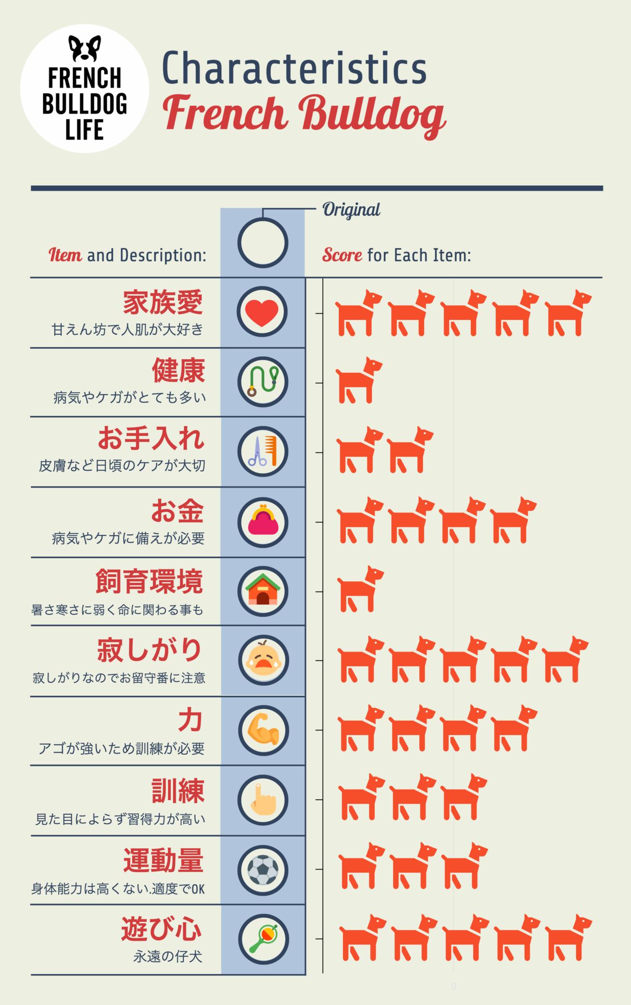 インフォグラフィック,infographic