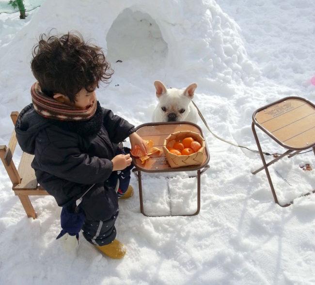雪とフレブル