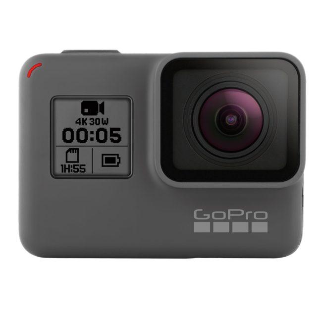 フレンチブルドッグ GoPro