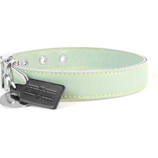 Pastel Green Leather Dog Collar