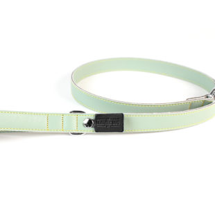 Pastel Green Leather Dog Lead