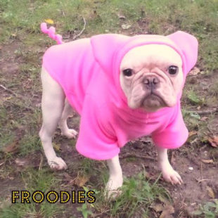 Pink Little Piggy Froodie
