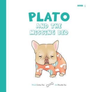 「Plato and the Missing Bed」