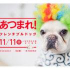 【イベント情報】あつまれ!フレンチブルドッグ @ 関西(大阪)