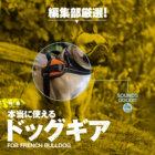【特集】編集部厳選!本当に使えるドッグギア