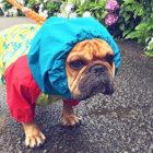 フレブル,雨対策
