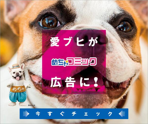 めちゃ犬,フレンチブルドッグ