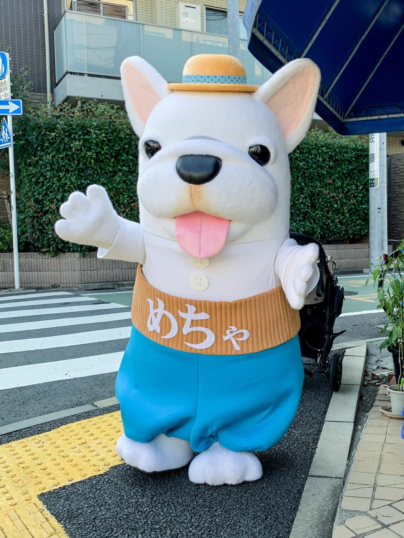 フレンチブルドッグ,めちゃ犬