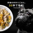 【調査で判明】手作り食の子は平均寿命が3年長かった!新鮮な手作り食が届くフードサービス『CoCo Gourmet(ココグルメ)』で、ご長寿ブヒを目指す。