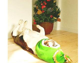 フレブル,クリスマス
