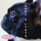 【母乳の力は偉大!】病気になりにくいカラダを作るサプリ「ペットアイジージー」〜産まれたての子犬が病気になりにくい理由とは!?〜