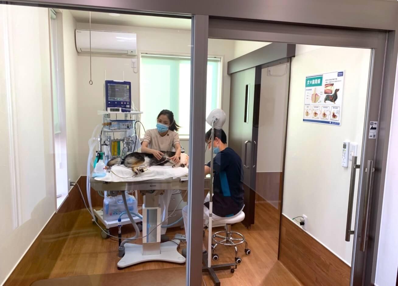歯科診察室画像