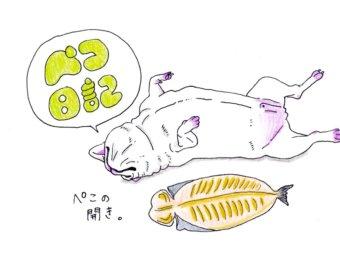 ペコ日記,フレンチブルドッグ