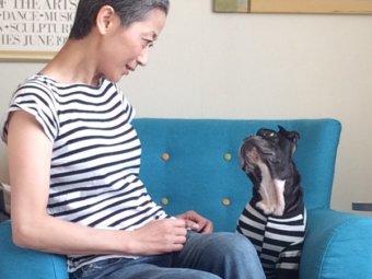 フレンチブルドッグ,オーナーと犬
