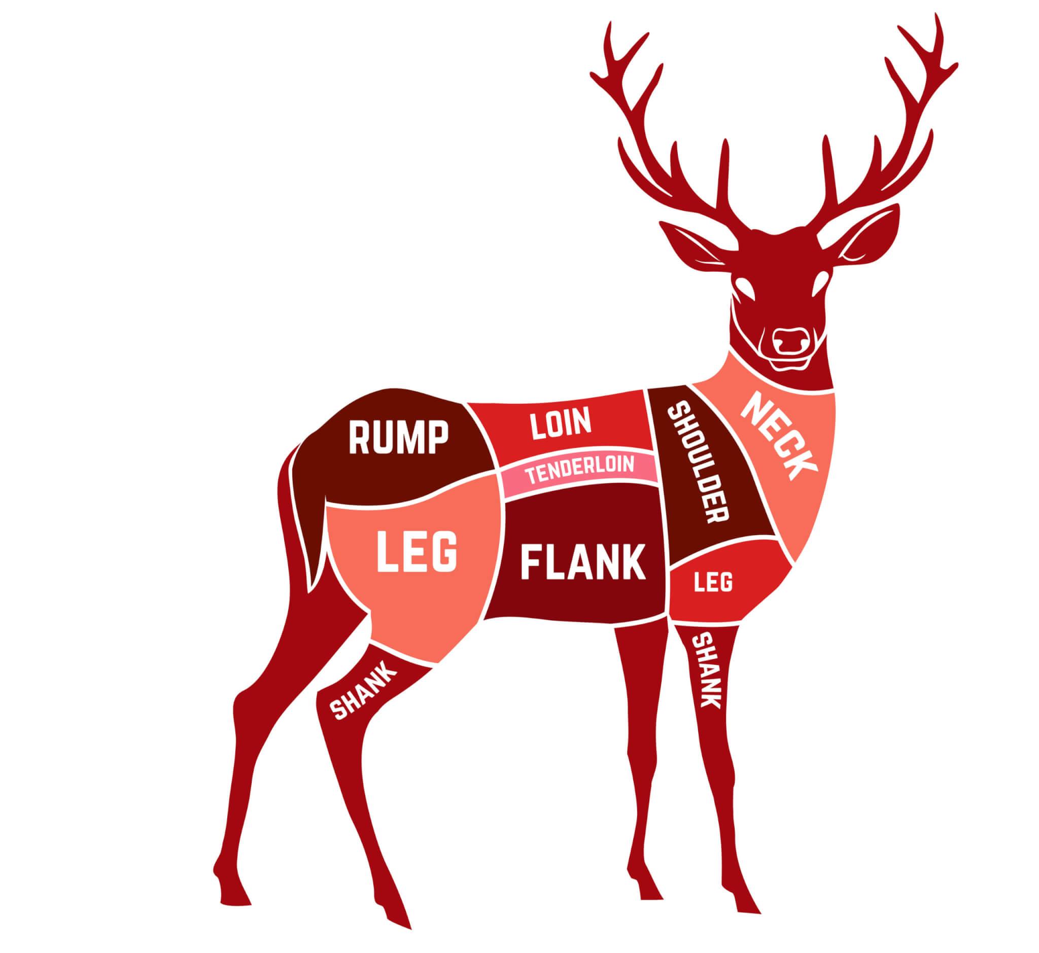 フレンチブルドッグ,フリーズドライ,鹿肉,ホワイトフォックス