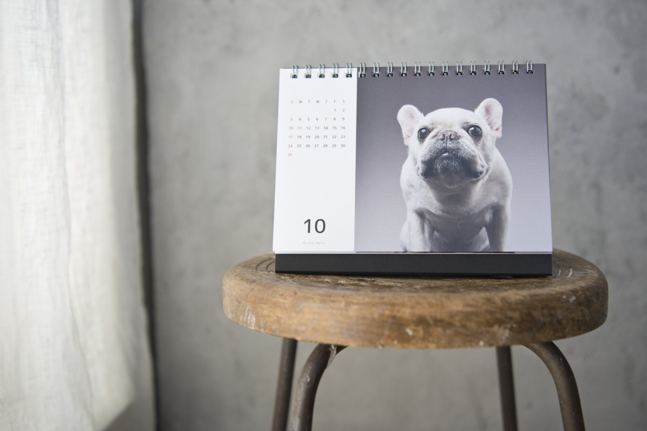 フレンチブルドッグ,カレンダー,内山慎吾