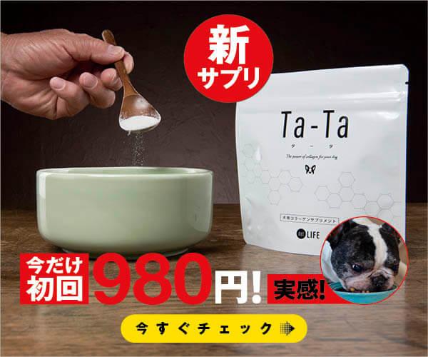 Ta-Ta,タータ,フレンチブルドッグ