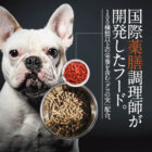 100種類以上の栄養を含む「クコの実」配合!日本でわずかな国際薬膳調理師が開発したフード『PELTHIA(ペルシア)』