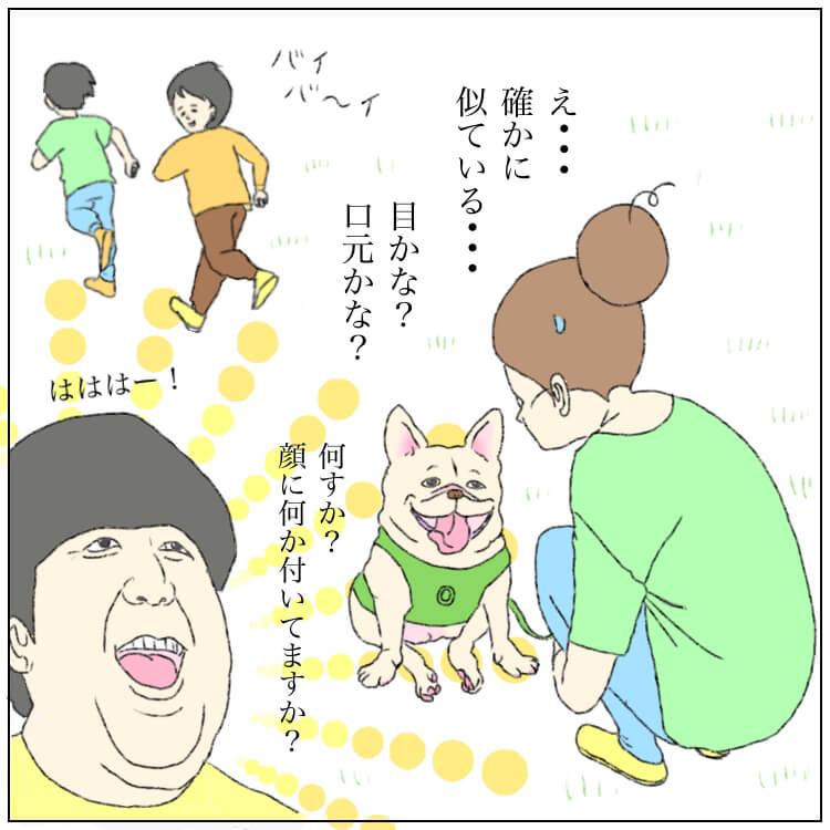 フレンチブルドッグ,ペコ日記